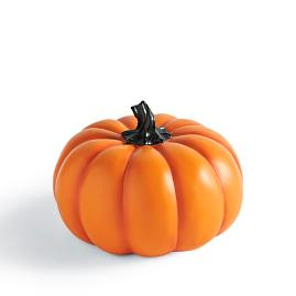 Designer Pumpkin Collection