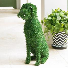 Faux Boxwood Garden Dog - Casey