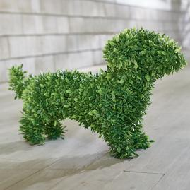 Faux Boxwood Garden Dog - Oscar