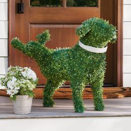 Faux Boxwood Garden Dog - Peabody
