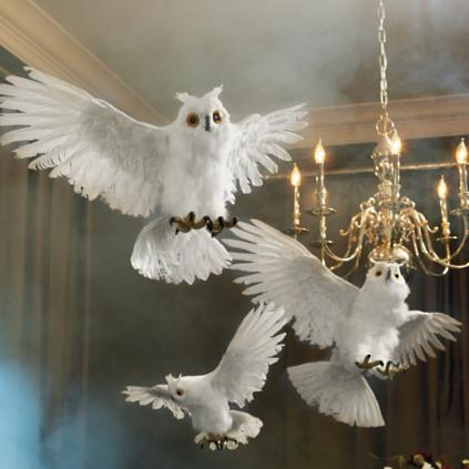 flying white owls