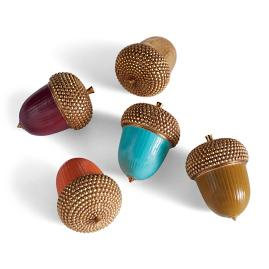 Colorful Acorns, Set of Five