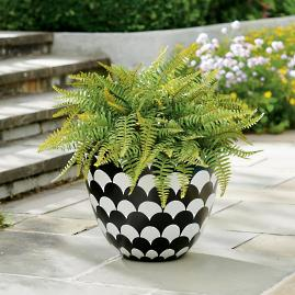 Fancy Fern Urn Filler