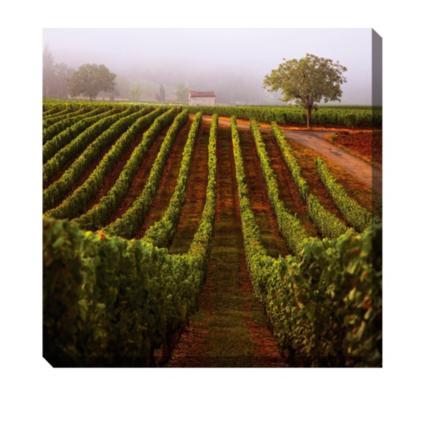 Vineyard Walk Outdoor Wall Art | Grandin Road