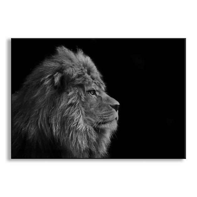Male Lion Metal Wall Art Grandin Road