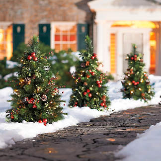 set of two mackinley cordless pathway trees - Christmas Pathway Decorations