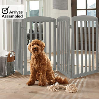Pet Accessories Furniture Grandinroad